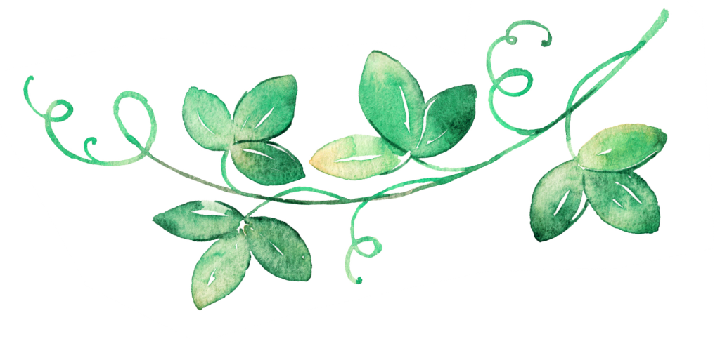 Decorative Vine divider