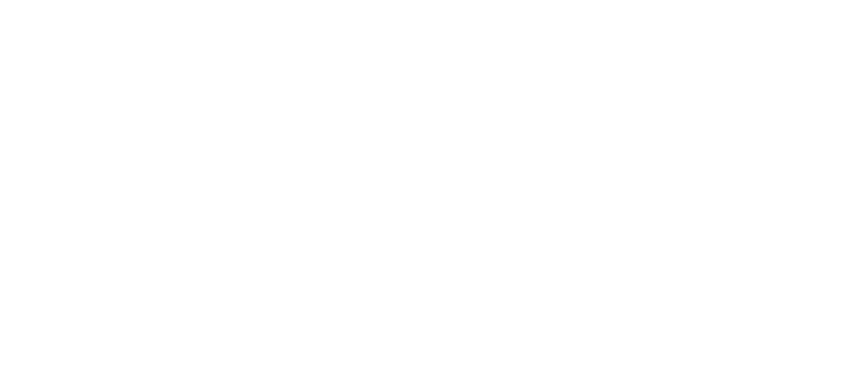 White floral divider